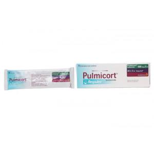 Thuốc khí dung trị hen Pulmicort Respules 500mcg/2ml (4 gói x 5 ống/hộp)