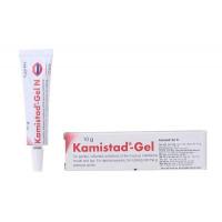 Gel điều trị các chứng viêm, đau ở viêm mạc miệng và môi Kamistad (10g)