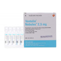 Dung dịch khí dung trị hen Ventolin Nebules 2.5mg (6 vỉ x 5 ống/hộp)