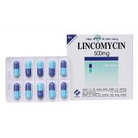 Thuốc kháng sinh Lincomycin 500mg Vidipha (10 vỉ x 10 viên/hộp)