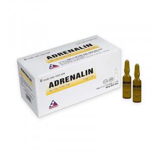 Dung dịch tiêm Adrenalin 1mg/1ml (50 ống/hộp)