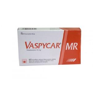 Thuốc điều trị đau thắt ngực Vaspycar MR 35mg (2 vỉ x 30 viên/hộp)