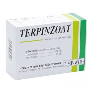 Thuốc điều trị ho, long đờm Terpinzoat (10 vỉ x 10 viên/hộp)