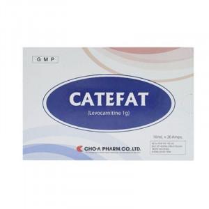 Thuốc điều trị thiếu hụt carnitine Catefat 1g (2 vỉ x 10 ống/hộp)